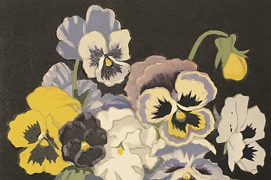 ☑️ hall thorpe pansies